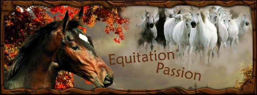 Equitation passion ....Parce qu'on a tous une passion !