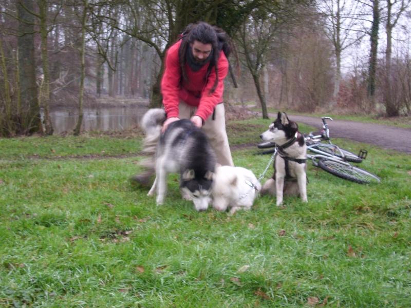 photos des premières randos de mes loups Le_gan13