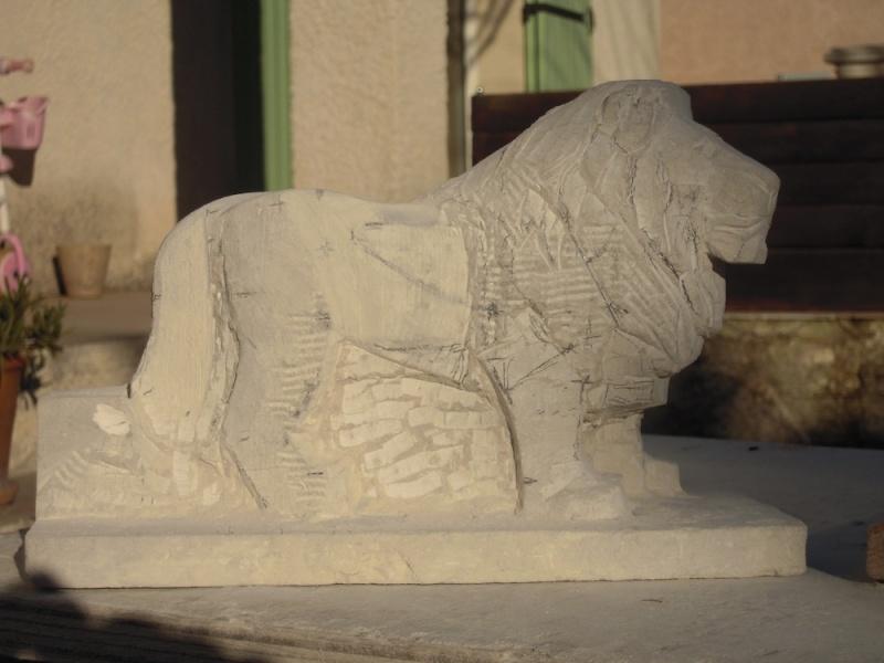 Lion Dscn1910