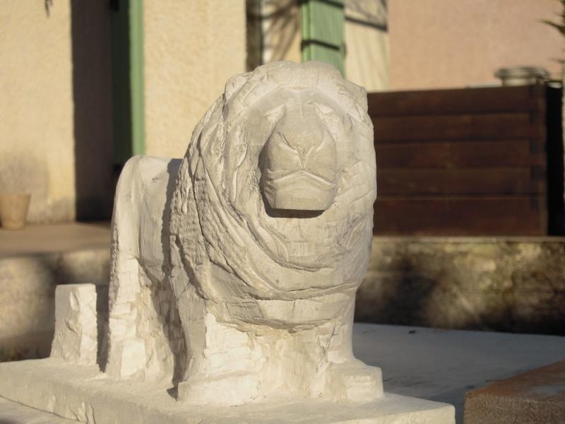 Lion Dscn1911