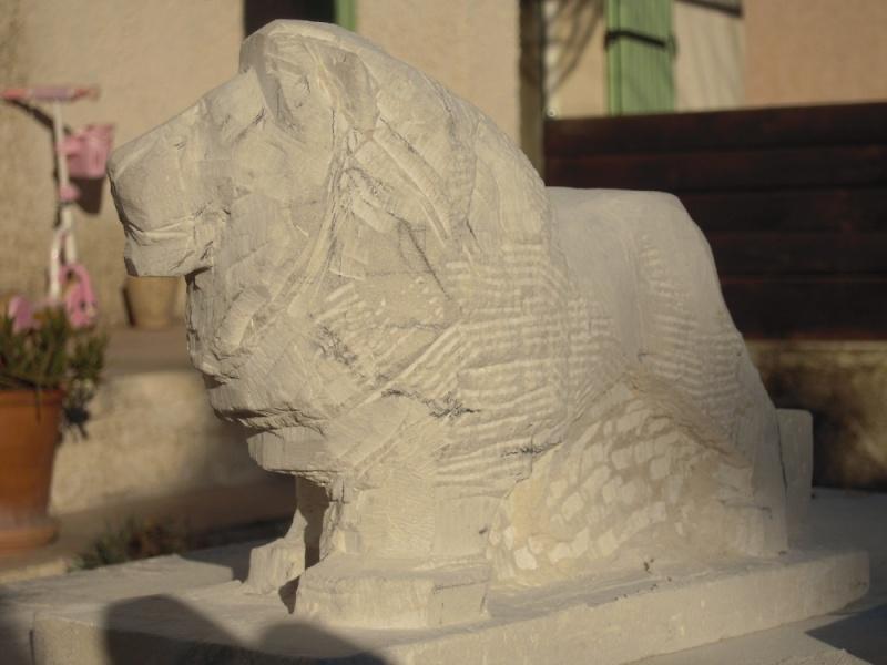 Lion Dscn1912