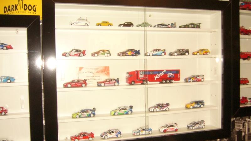 doui08 et les miniatures P1080413