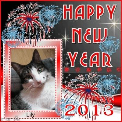 Bonne année 2013 ! 1sxw9-26