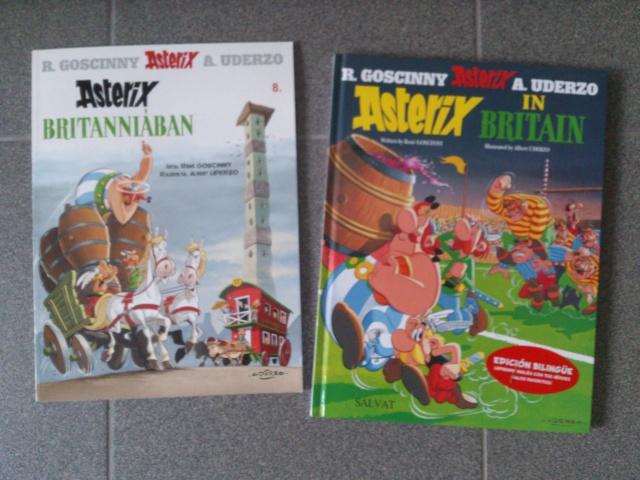 Les nouvelles acquisitions d'Astérix 1988 - Page 14 Dsc_0313
