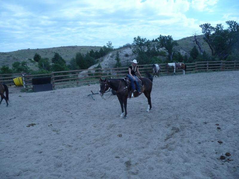 Tourisme à cheval P1060411
