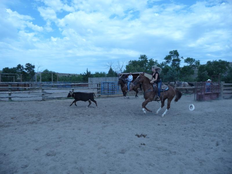 Tourisme à cheval P1060412