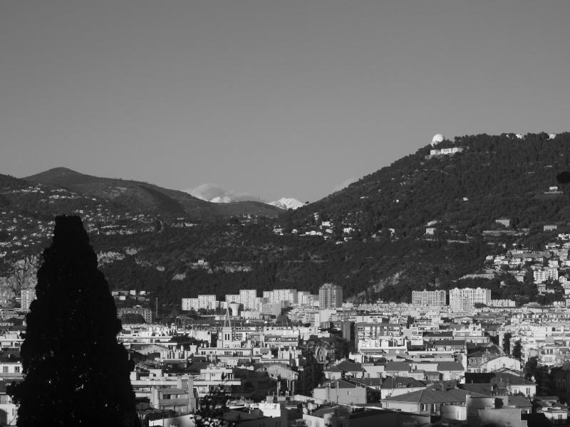 Un peu de tout au chateau de Nice !!! Pc026818