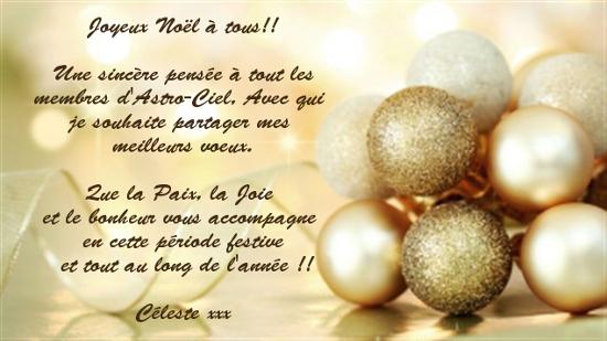 Joyeux Noël tout le monde! - Page 3 Noel310