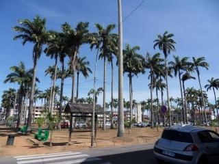 Outremer- découverte de la Guyane - Page 14 81110