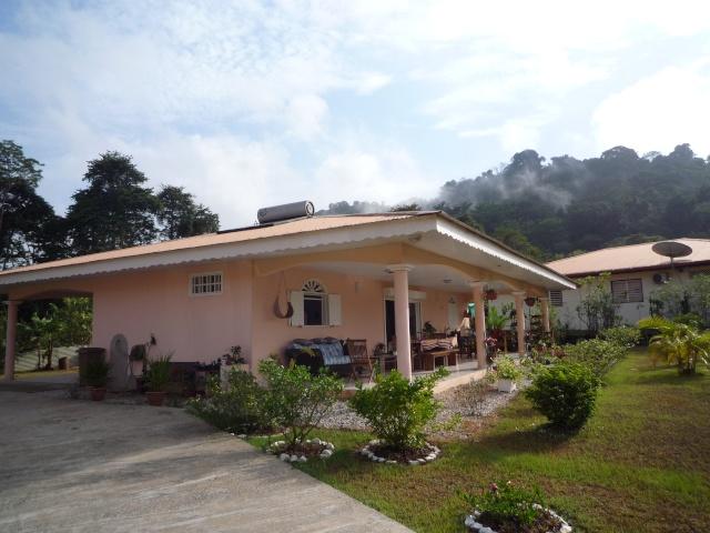 Outremer- découverte de la Guyane - Page 14 P1020014