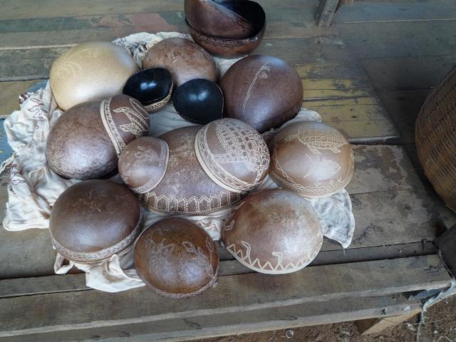 Outremer- découverte de la Guyane - Page 8 P1020110