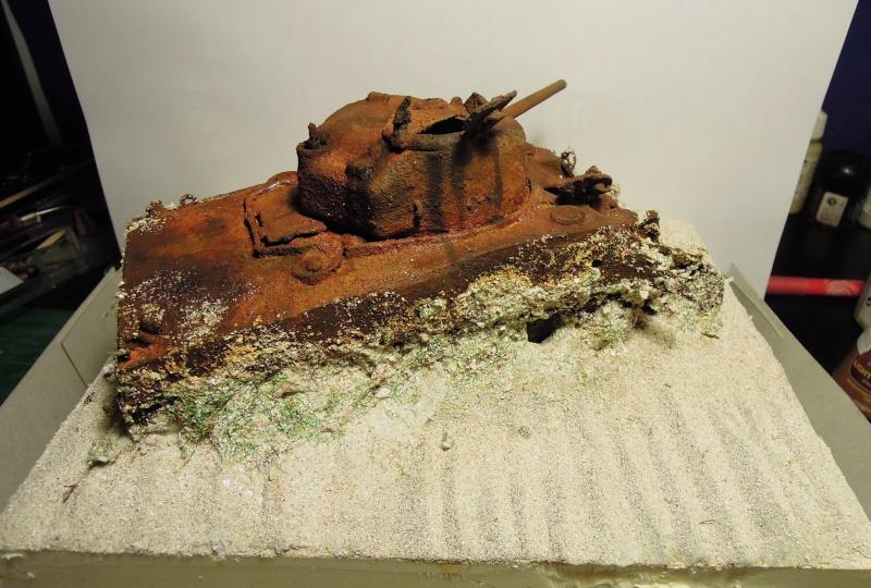 Sherman - sherman dans le lagon Dscn3831