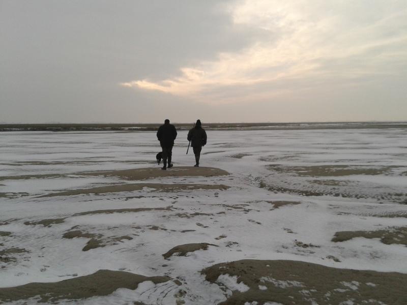 la baie de somme enneigée  2013-011