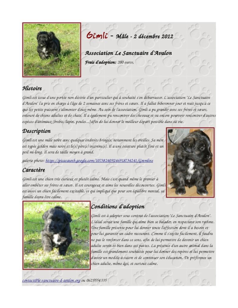 6 chiots à adopter mi-février et demande de dons Ficheg11