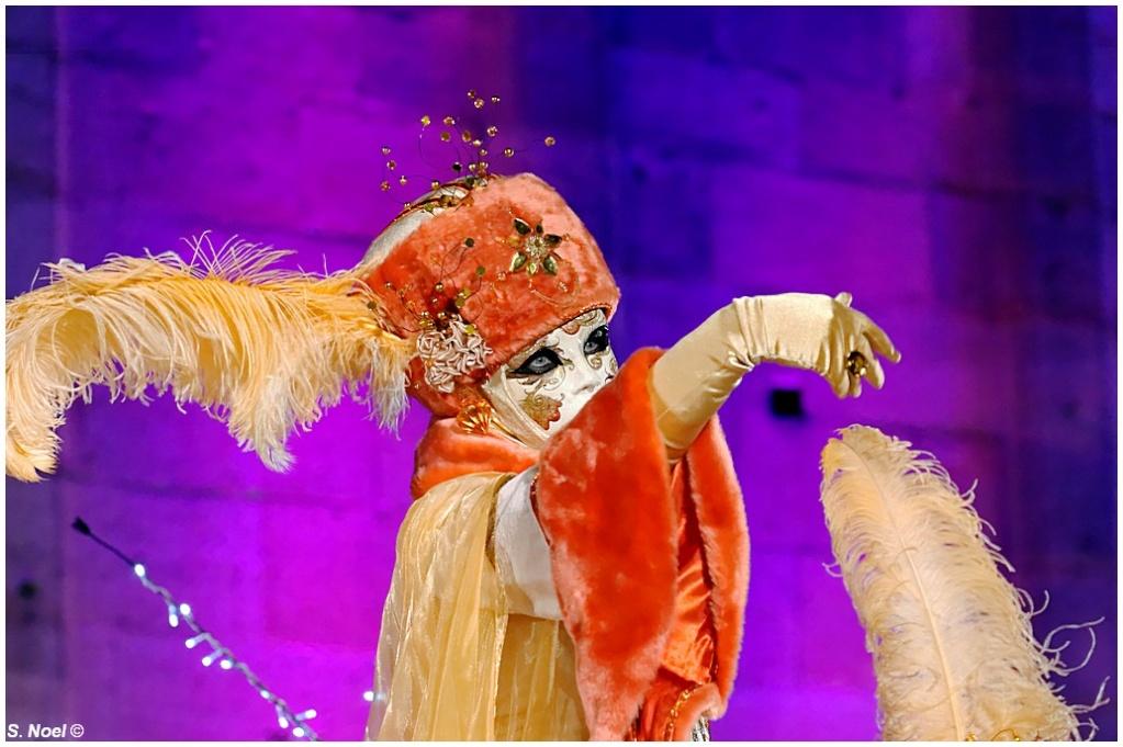 Carnaval vénitien de Rosheim 2013 Imgp0210