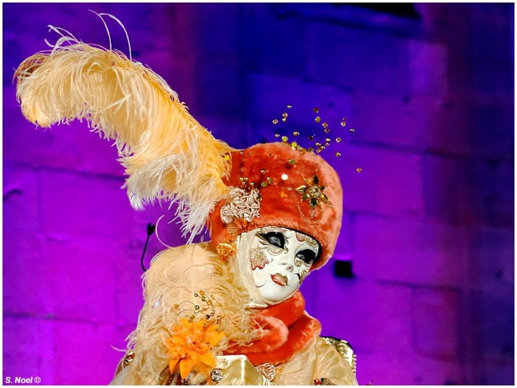 Carnaval vénitien de Rosheim 2013 Imgp0211