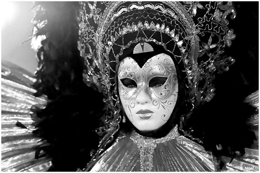 Carnaval vénitien de Rosheim 2013 - Page 2 Imgp0411