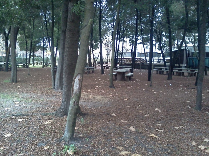 OSCAR MIKE 2013 PORTUGAL - Página 2 48136610