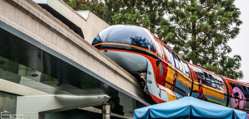 Disneyland Anaheim 2018 Trip Report Video,Photo,Mariage a Vegas et plein de parc d'attractions(Californie,Arizona,Utah,Nevada) - Page 2 46458610