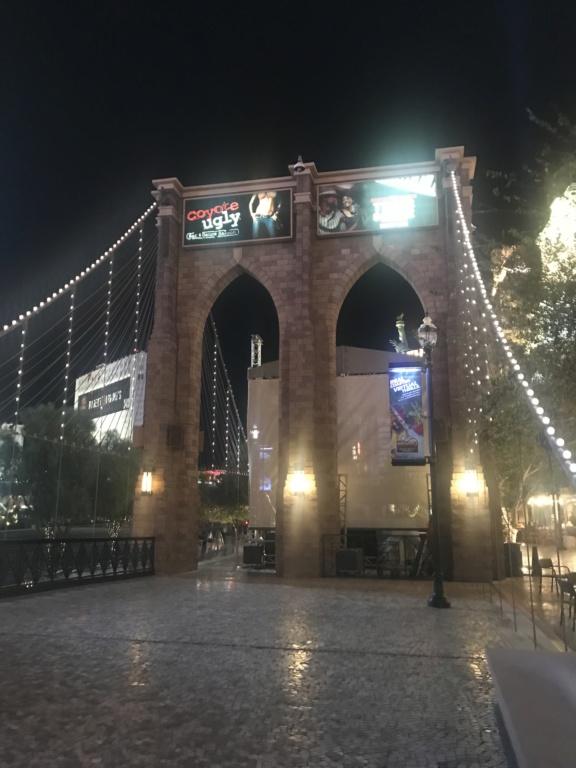Disneyland Anaheim 2018 Trip Report Video,Photo,Mariage a Vegas et plein de parc d'attractions(Californie,Arizona,Utah,Nevada) - Page 3 Img_0539