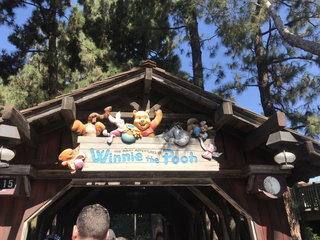Disneyland Anaheim 2018 Trip Report Video,Photo,Mariage a Vegas et plein de parc d'attractions(Californie,Arizona,Utah,Nevada) Img_8212