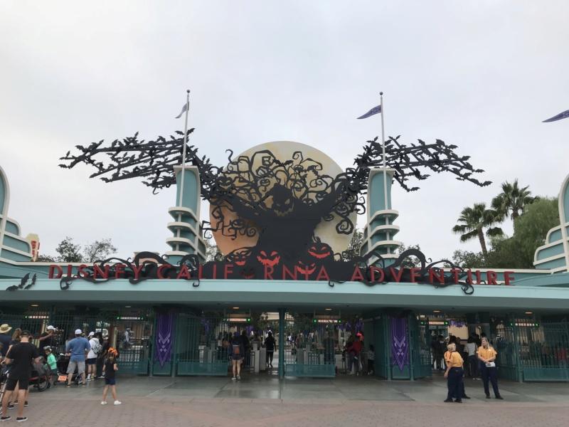 Disneyland Anaheim 2018 Trip Report Video,Photo,Mariage a Vegas et plein de parc d'attractions(Californie,Arizona,Utah,Nevada) - Page 2 Img_8519