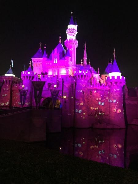 Disneyland Anaheim 2018 Trip Report Video,Photo,Mariage a Vegas et plein de parc d'attractions(Californie,Arizona,Utah,Nevada) - Page 2 Img_8915