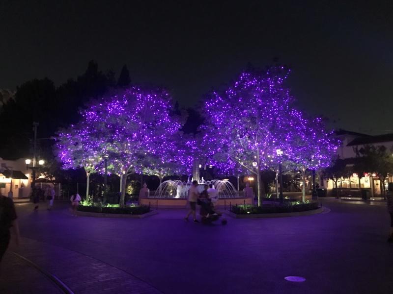 Disneyland Anaheim 2018 Trip Report Video,Photo,Mariage a Vegas et plein de parc d'attractions(Californie,Arizona,Utah,Nevada) - Page 2 Img_9619