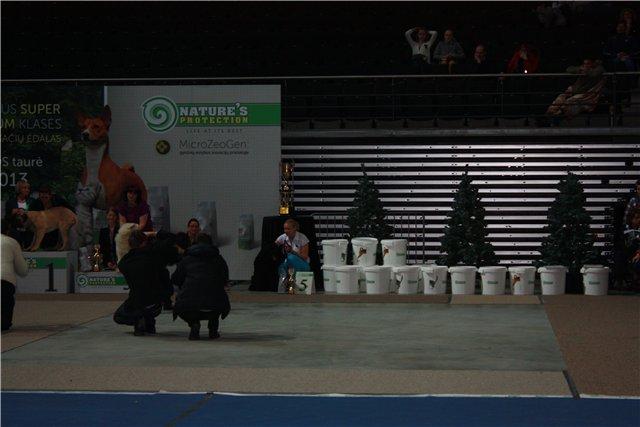 26-27/01/2013 Каунас САСИБ + САС ! 82cfa311