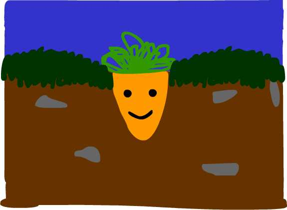Assignment 19: Flash animation first frame Due Dec14 Carrot11