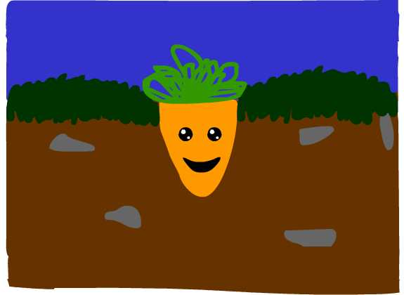 Assignment 19: Flash animation first frame Due Dec14 Carrot13