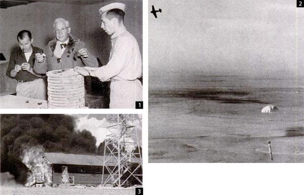 """ Bat bomb "" : les bombes chauves souris Batbom10"