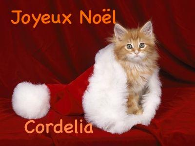 Avatars Joyeux Noël Sans_t10