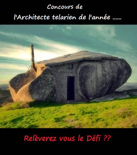 """[Dimensions] Venez voter pour le concours """"Architecte telarien de l'Année!"""" 2conc10"""