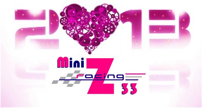Le Mini Z Racing 33 , enfin un club en gironde à Floirac prés de Bordeaux - Page 2 Mzr33_14
