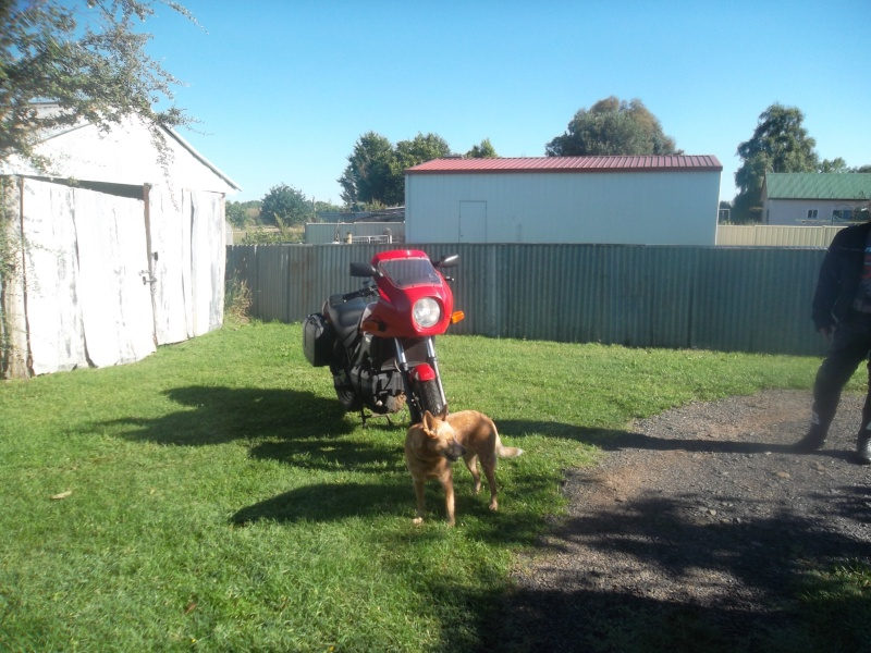Impromptu ride to guyra and beyond - Page 2 Sam_2213