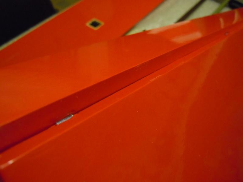 le CIRRUS F5J   sorti de la boite Dscn0319