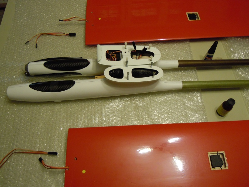 le CIRRUS F5J   sorti de la boite Dscn0320