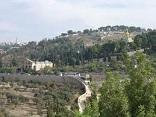 בית ישראל  Haus ISRAEL 53010