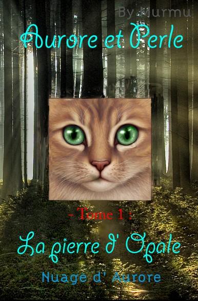 P'tite réserve d'histoire Aurore10