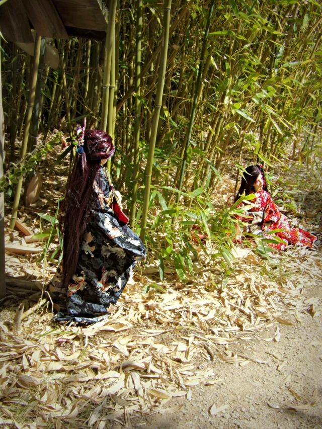{Le Cabinet des Curiosités} Kdoll - Le passage des démons - Page 3 Bamboo16