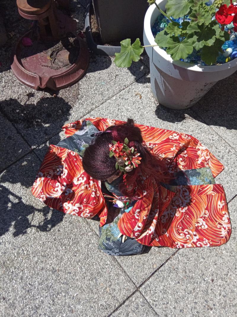 Kimono et Kanzashi SD Img_2037