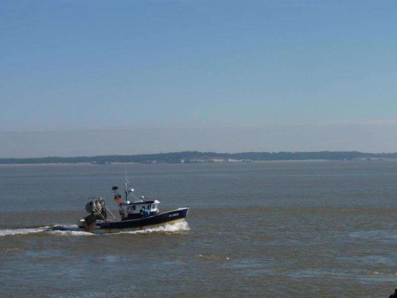 Estuaire de la Gironde -Toussaint 12 de Titejojo23 68681_10