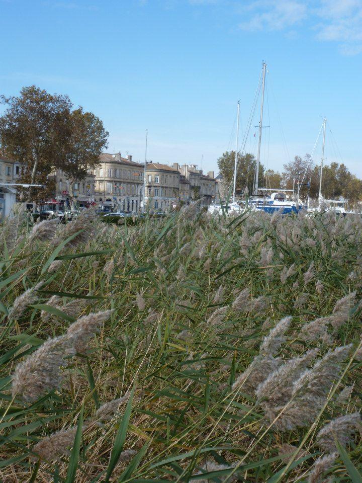 Estuaire de la Gironde -Toussaint 12 de Titejojo23 76451_10