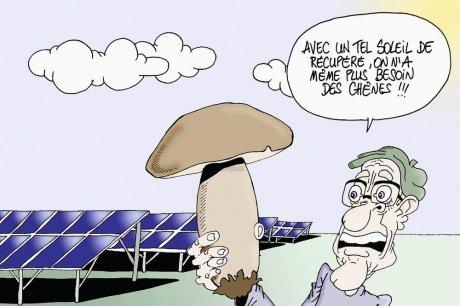 Les dessins humoristiques du Journal Sud Ouest sur l actualité du Médoc - Page 3 93934710