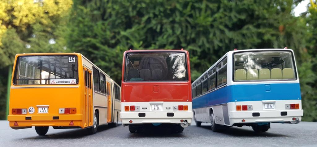 Ikarus 256.51 und 250.59 von Classic Bus 20190725