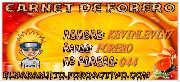 CARNET KEVINLEVIN7 Carnet11