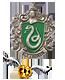 Slytherin - Vertrauensschüler - Quidditchteam