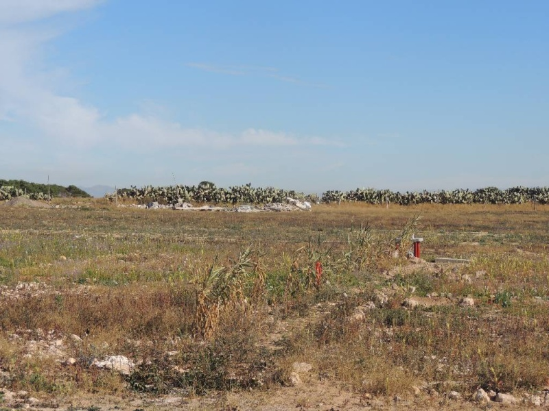 camping BAKANOU (2013) Dscn0929
