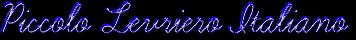 Левретка – итальянская борзая Coolte34